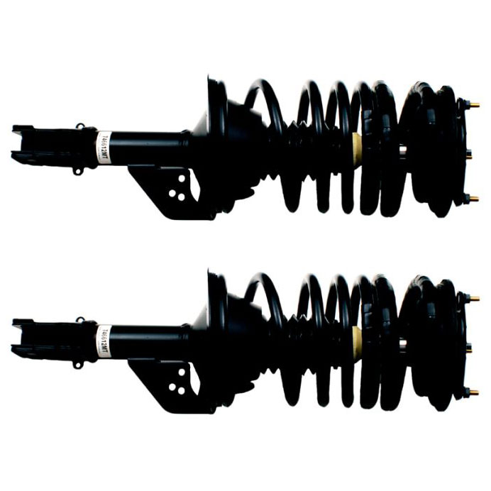 Dodge Caravan CV                     Shock and Strut SetShock and Strut Set